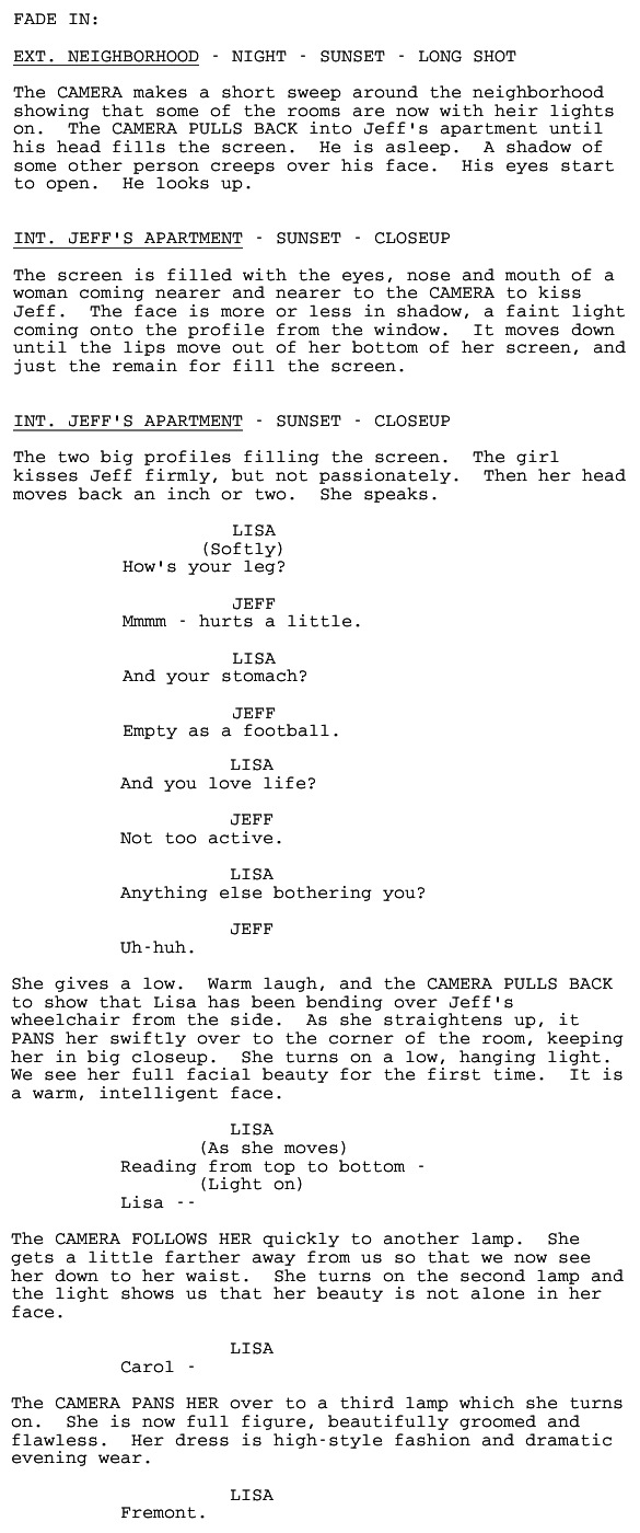 Rear Window screenplay excerpt, pages 23 - 24